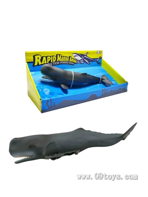 惯性极速海洋动物-抹香鲸